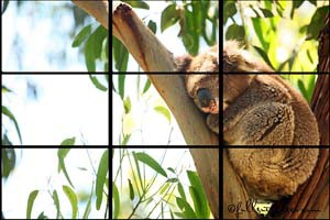 Travel photography tips - rule of thirds example