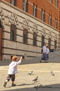 Child chasing pigeons in Italy