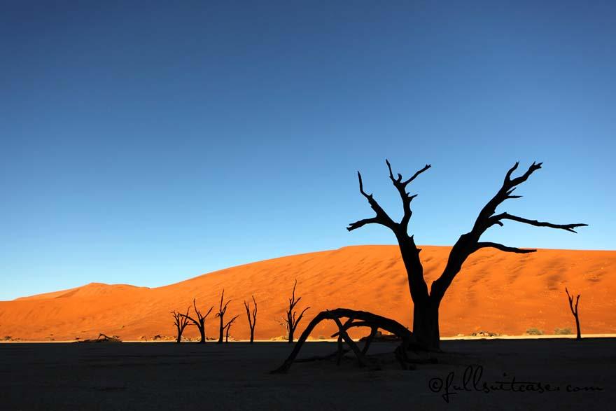 Namibia Deadvlei near Sossusvlei sand dunes and dead trees at sunrise