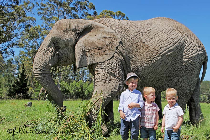 South Africa with Kids – Trip Itinerary and Travel Tips