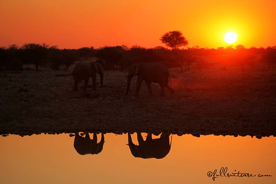 Okaukuejo Camp is the best place to stay in Etosha