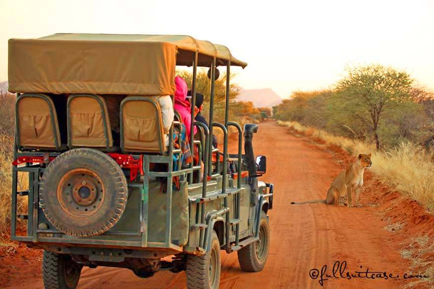 African Safari Tips & Things to Know Before Going on Safari in Africa