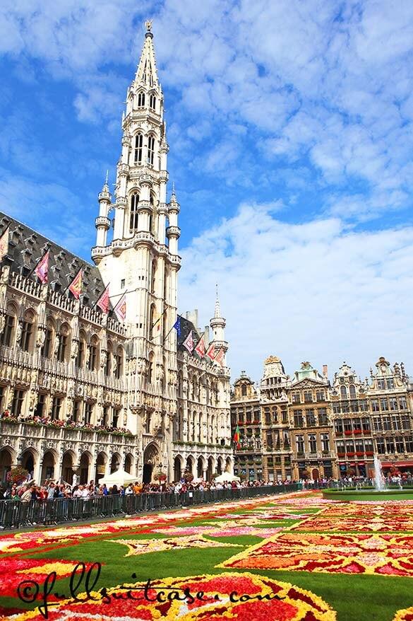 Bi-annual Brussels flower carpet