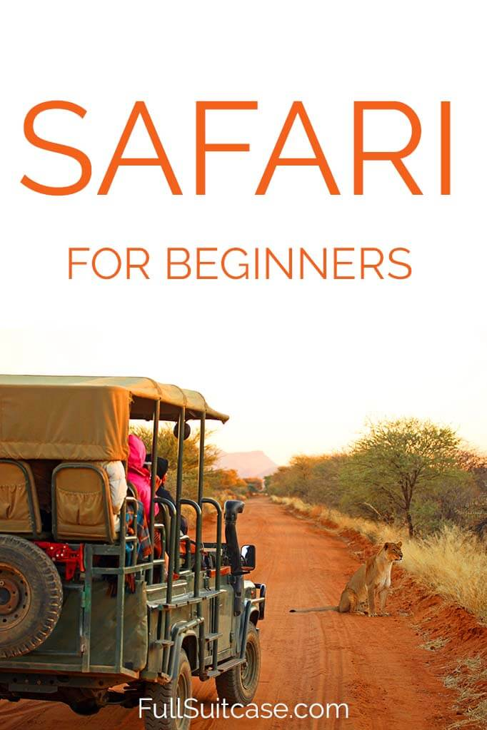 First timers tips for a safari in Africa