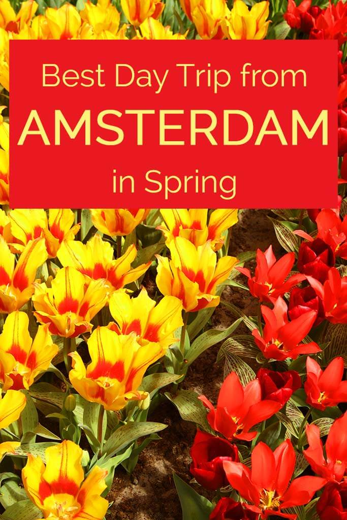 Best day trip from Amsterdam in Spring