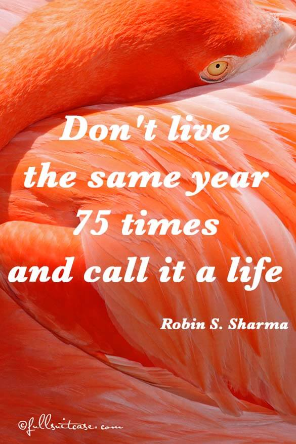 Don't live the same year 75 times and call it a life Quote