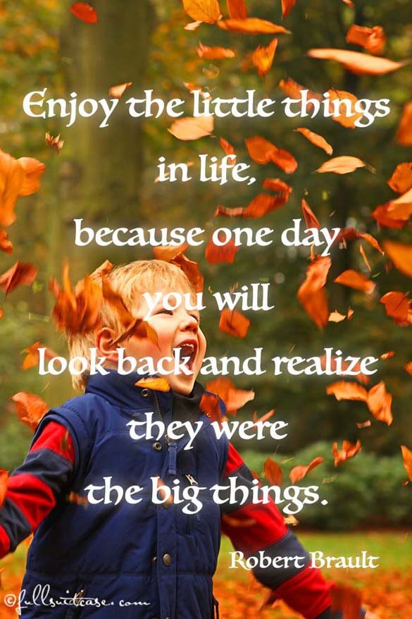 Enjoy the little things in life, because one day you will look back and realise they were the big things quote
