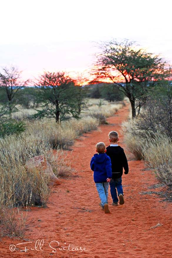 Children on a family trip to Namibia in Kalahari desert at sunset