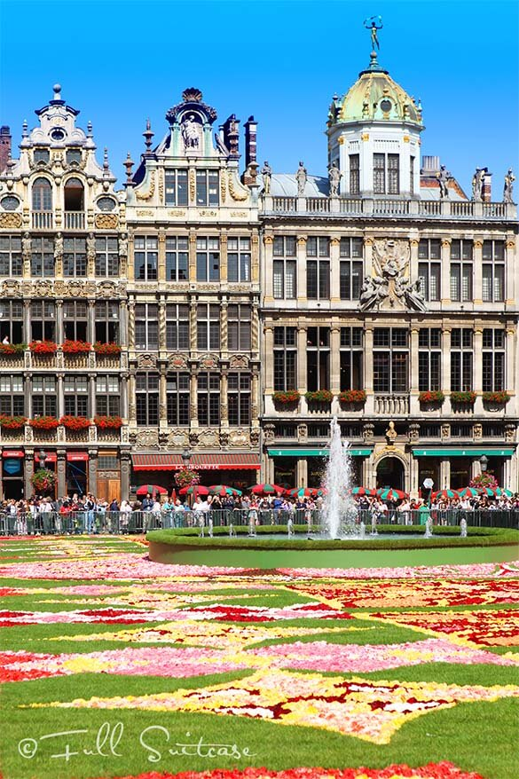 Brussels Grand Place and Flower Carpet 2010