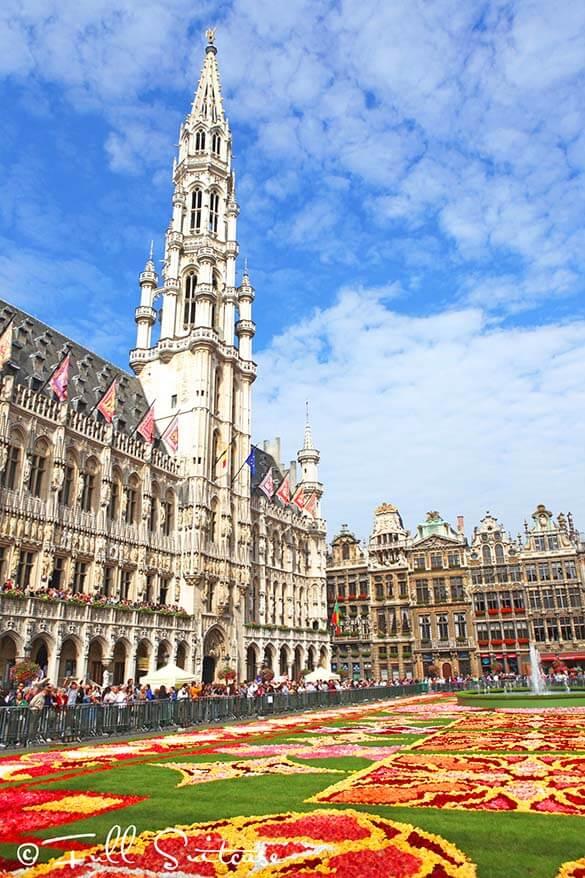 Visit Belgium in 2016 for Brussels flower carpet and fantastic hotel deals