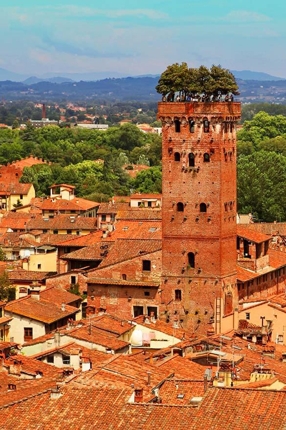 Guinigi Tower as seen from Torre Delle Ore in Lucca - Tuscany, Italy
