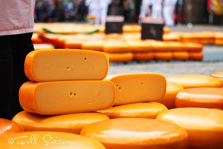 Dutch Gouda cheese at the Alkmaar cheese market