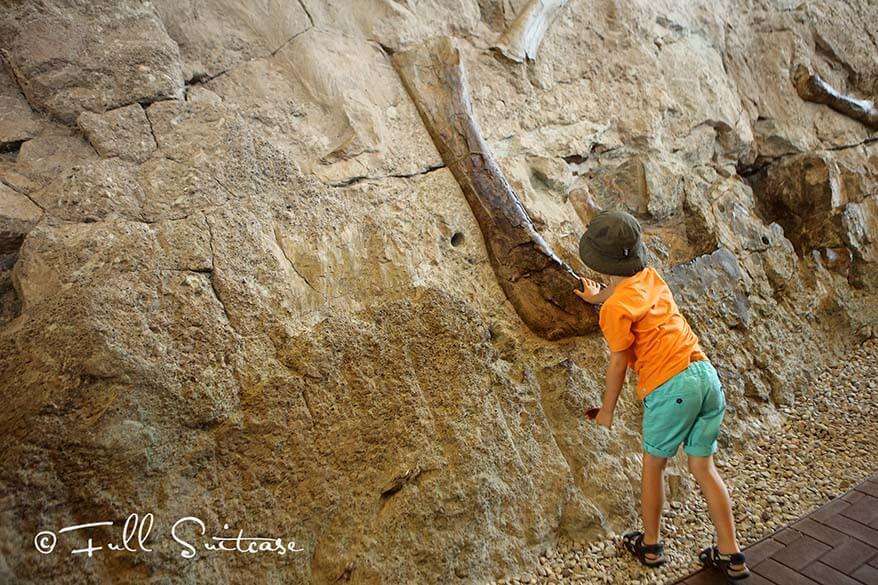 Touch a dinosaur bone at Dinosaur National Monument, Utah
