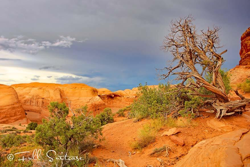 Hiking the Delicate Arch trail