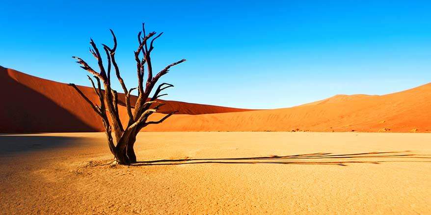 13 Fascinating Places to Visit in Namibia (Best Things to Do)