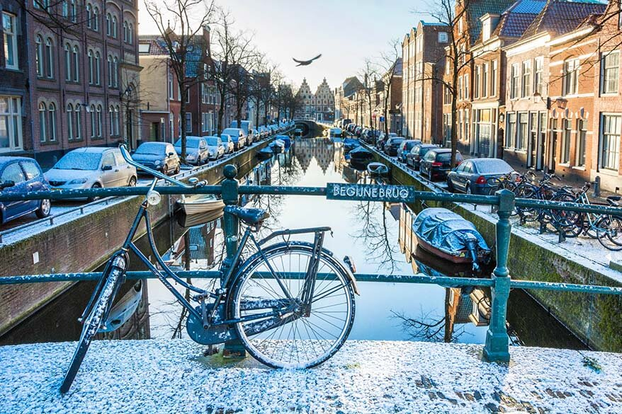 Best day trips from Amsterdam - Haarlem