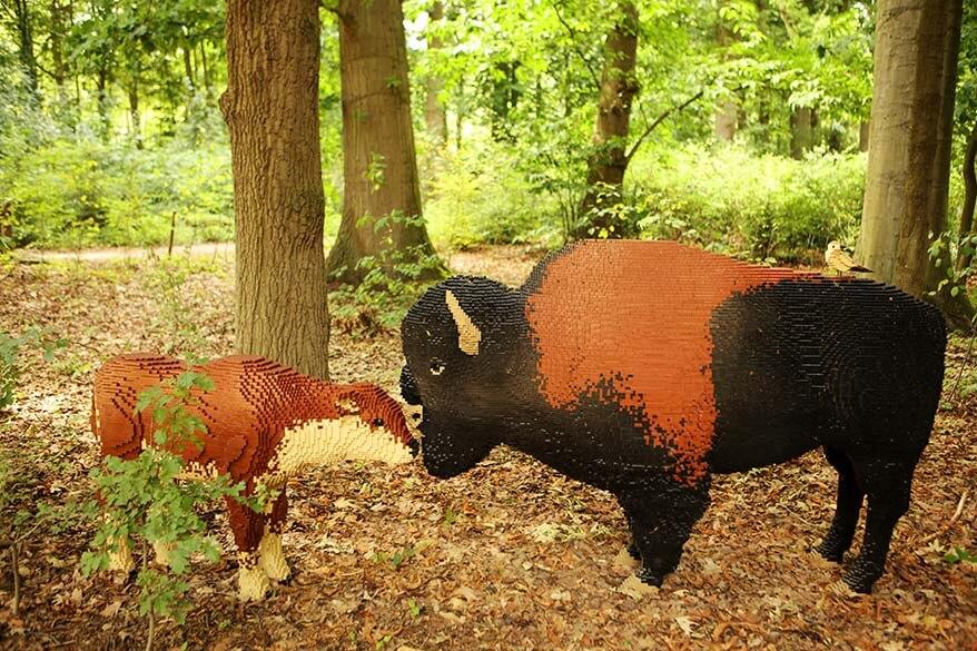 Art with Lego bricks American bison in Planckendael animal park