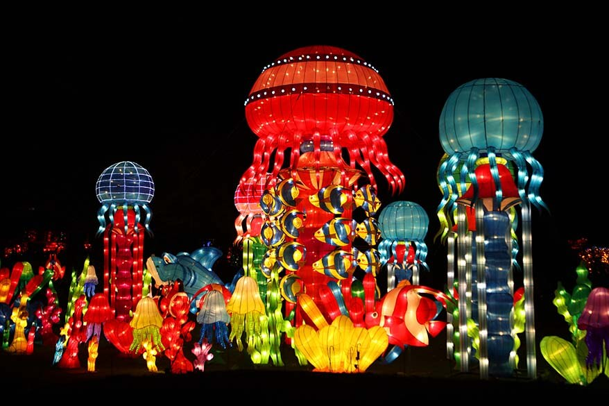 China Light festival in Antwerp Zoo in winter