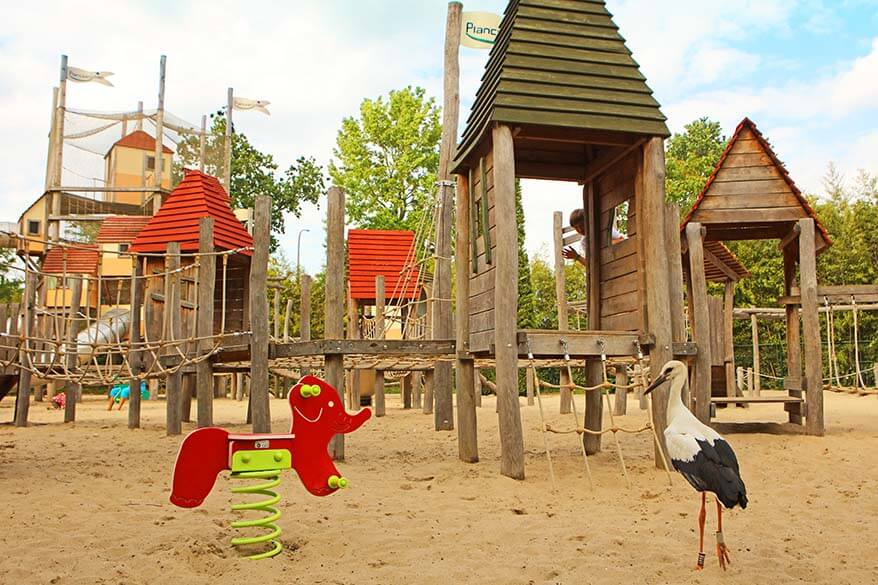 You might have to share the playground with storks at Planckendael