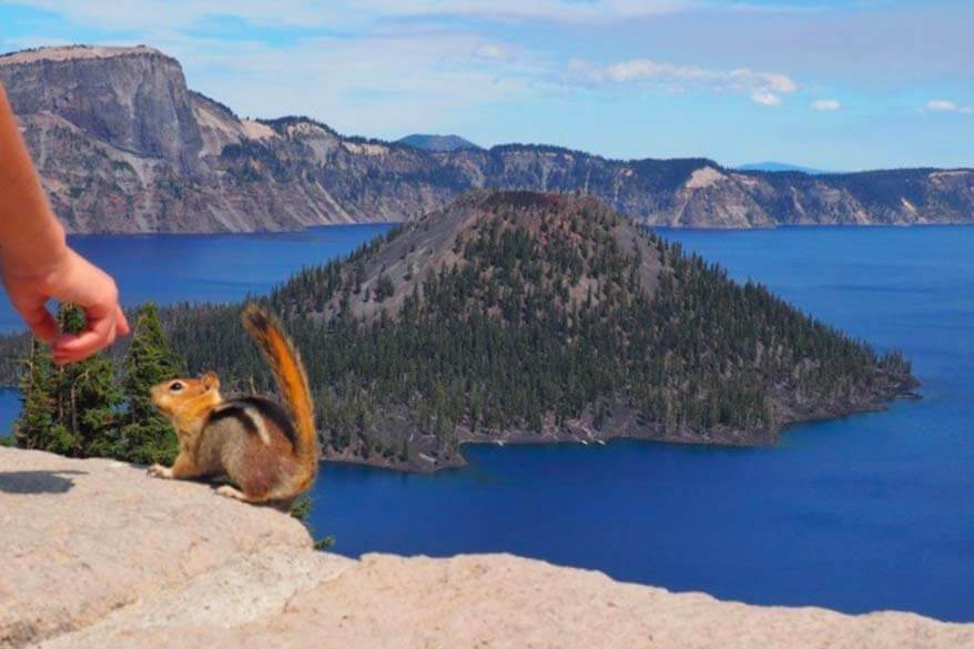 Crater Lake NP is a very family-friendly lesser known National Park to visit with kids