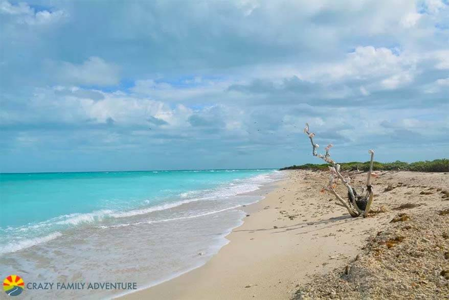 Dry Tortugas National Park is a true hidden gem of Florida