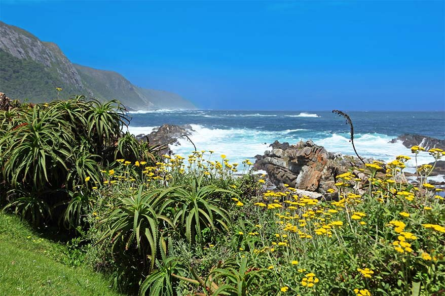 Garden Route in South Africa is one of the most scenic roads in the world
