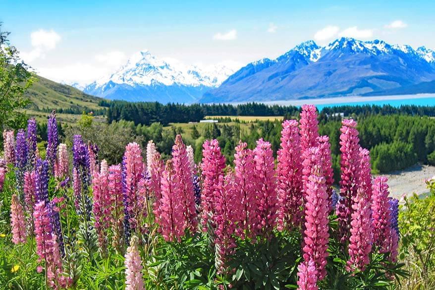Mount Cook Road New Zealand