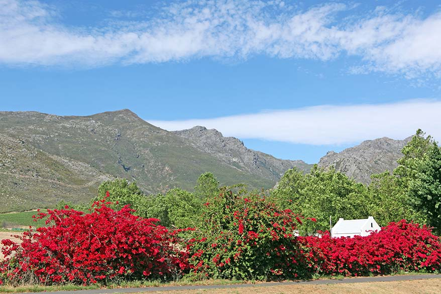 Franschhoek - Stellenbosch wineries region in South Africa