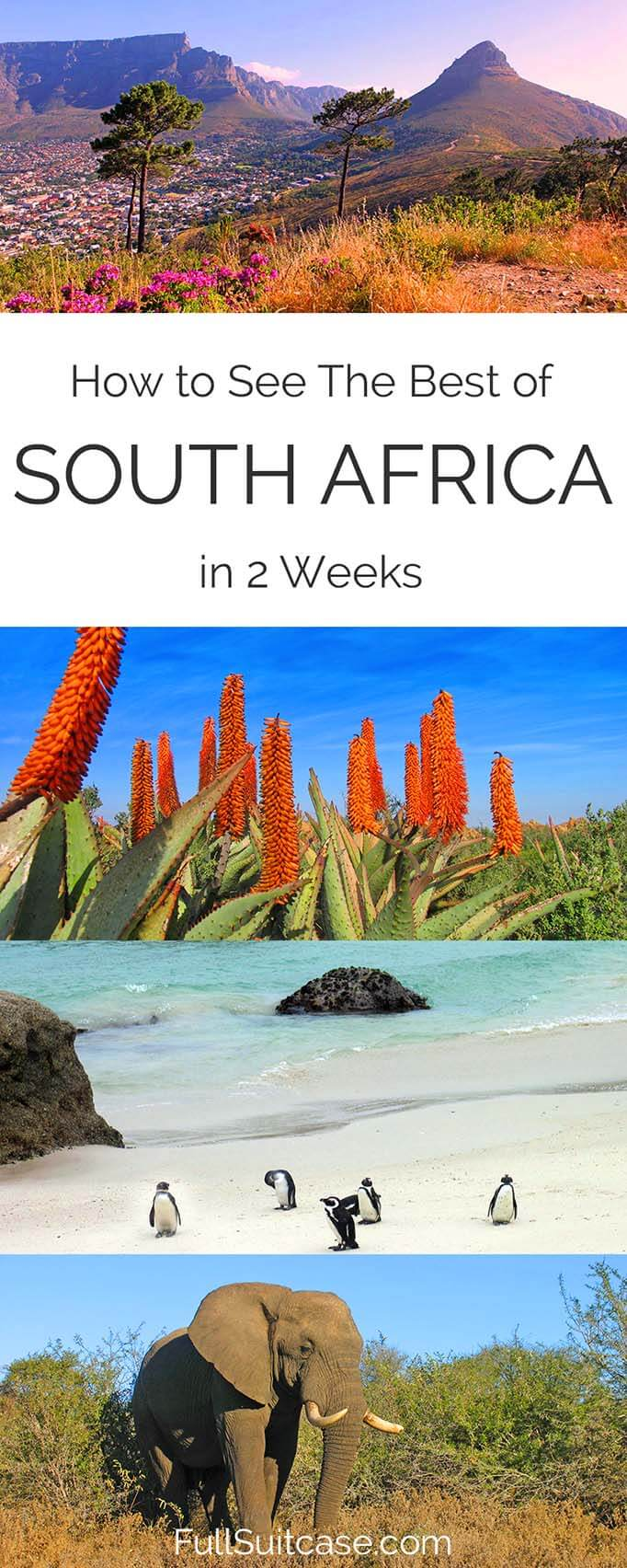 See the best of South Africa with this complete 2 week itinerary
