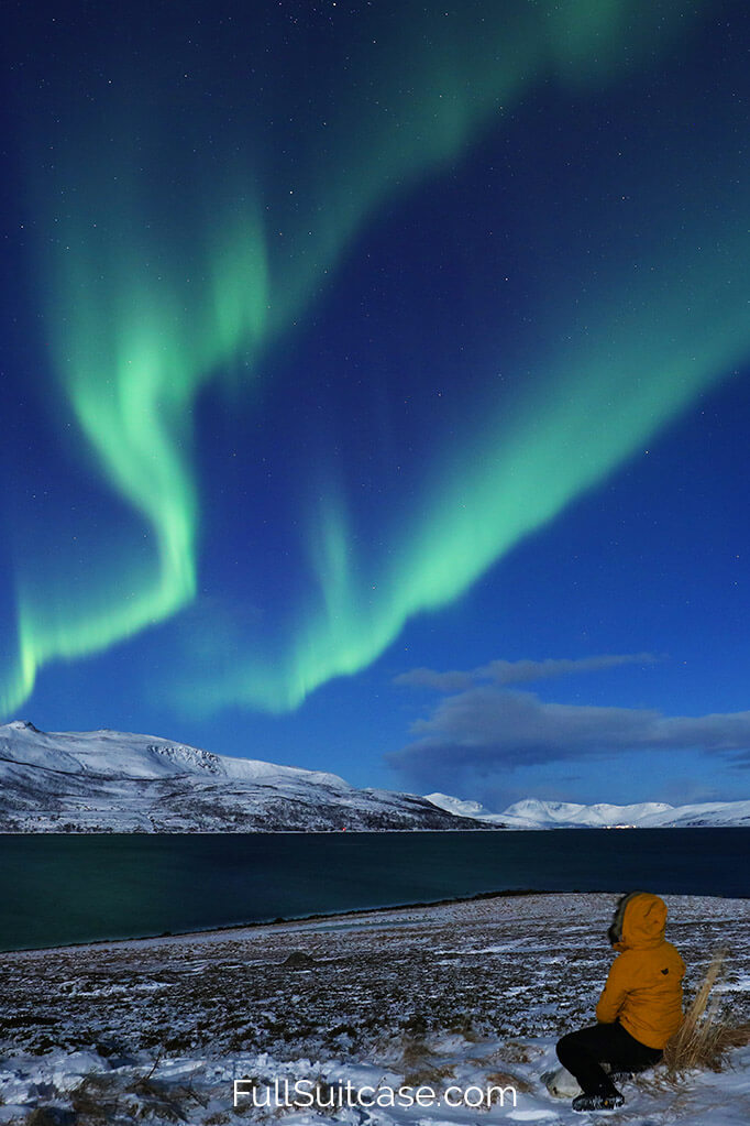 All you may want to know about how to see the Northern Lights in Tromso Norway