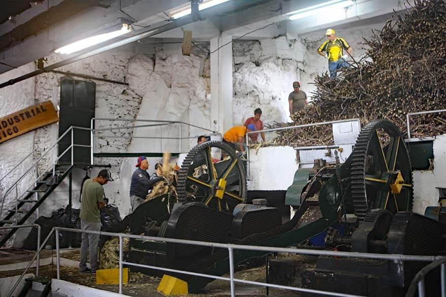 Calheta sugar cane factory in Madeira