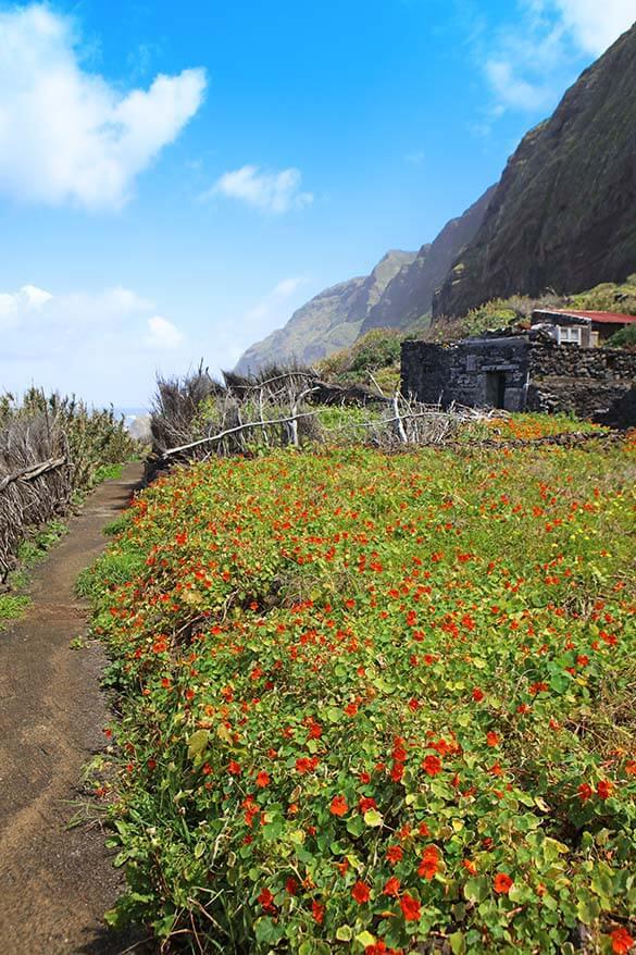 Faja da Quebrada Nova in Madeira