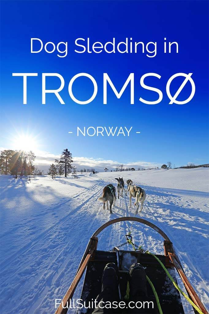 Dog sledding in Tromso Norway - ticking off the winter bucket list