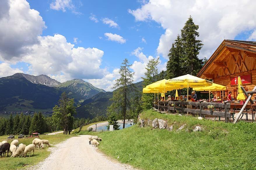 Gamsalm mountain restaurant in Ehrwald Tyrol Austria