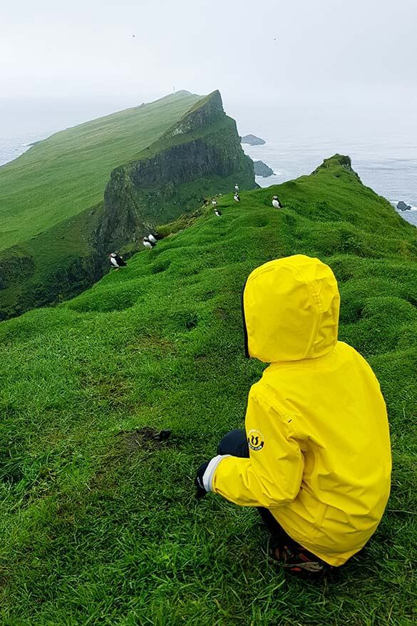 Hiking on Mykines island with kids