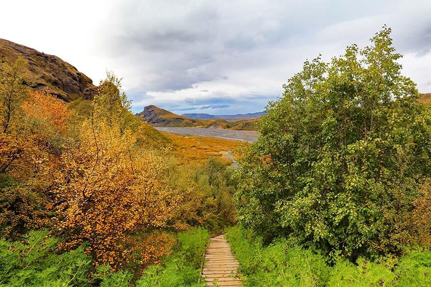 Autumn colors in Thorsmork Iceland