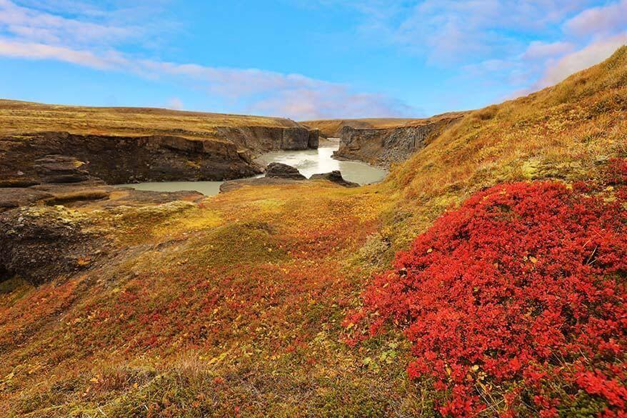 Iceland in September - beautiful autumn colours is just one of the reasons to plan September trip