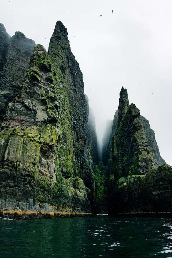 Boat tour to the cliffs of Hestur island is one of the most memorable experiences in the Faroes
