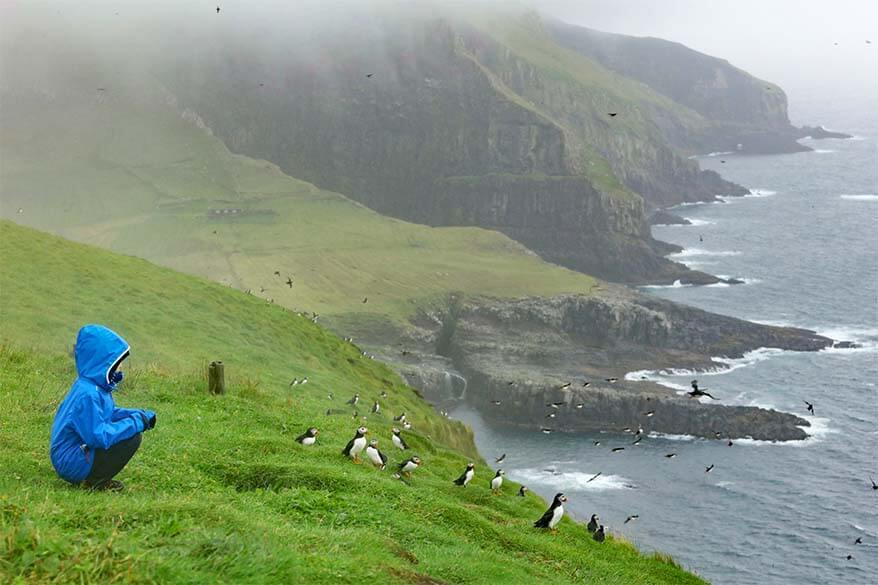 Mykines island should be on every Faroe Islands itinerary