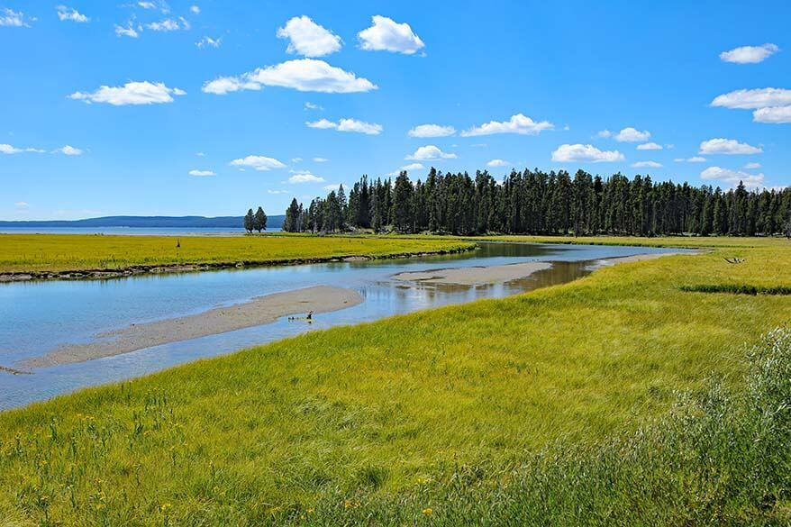 Beautiful scenery along Yellowstone Grand Loop Road
