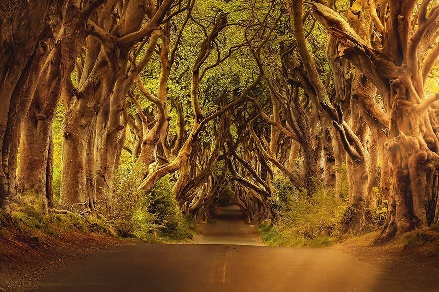 7 Best Game of Thrones Tours in Europe (Ultimate List)