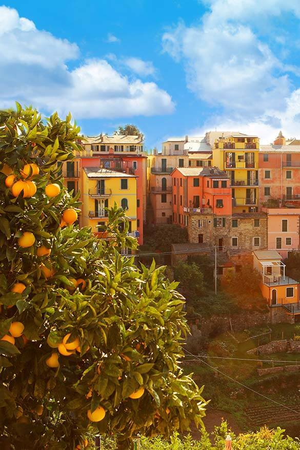 Corniglia is a town for those looking for a quieter stay or a longer vacation in Cinque Terre