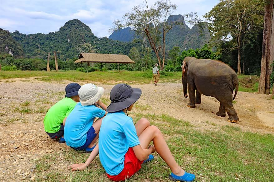 Elephant Hills with kids - family Jungle Lake safari tour review