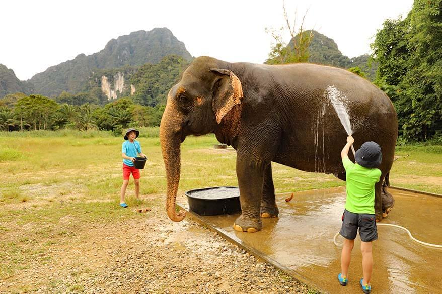 Washing elephants was one of the highlights of our family stay at the Elephant Hills in Thailand