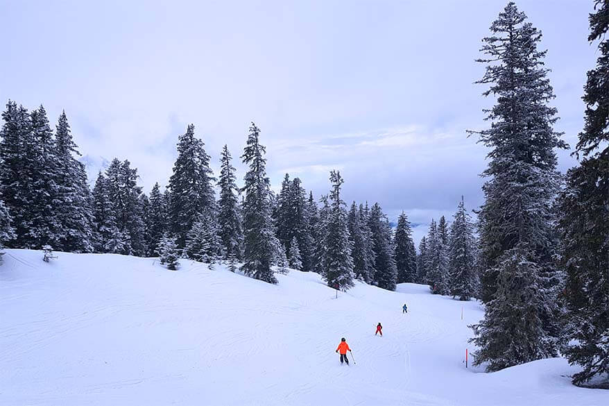 Skiing in Haslital with kids - great family oriented ski area in the Jungfrau Region, Switzerland