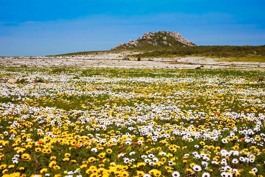 West Coast National Park - one of the nicest places to visit in South Africa