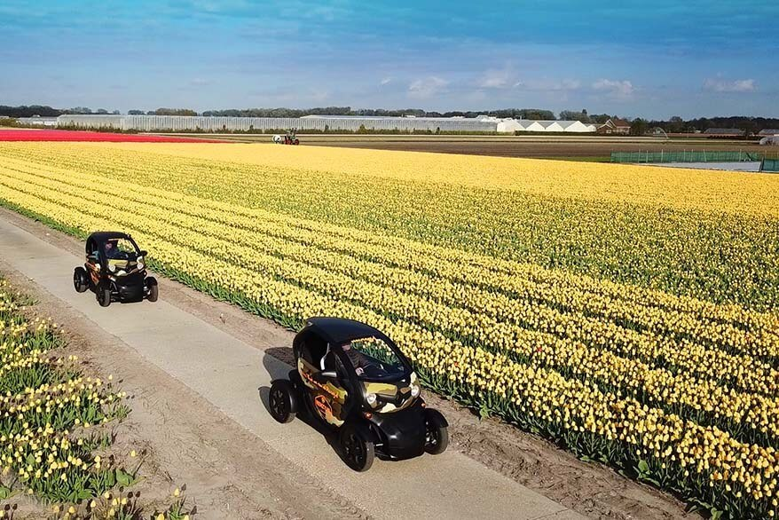 Amazing way to see Lisse tulip fields in the Netherlands on your own