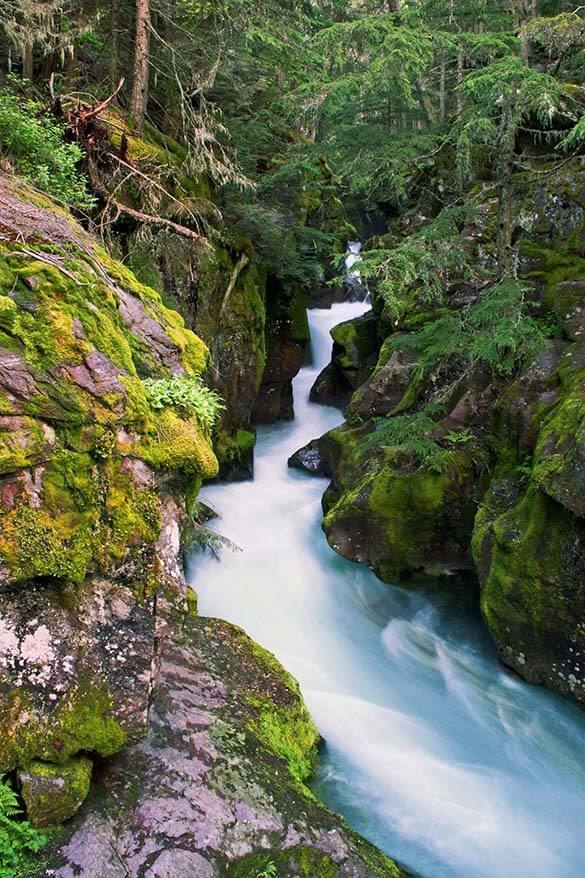 Avalanche Creek - Glacier National Park
