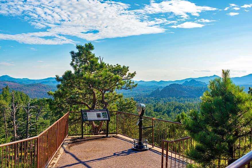 Custer State Park is one of the must-see places in the Black Hills