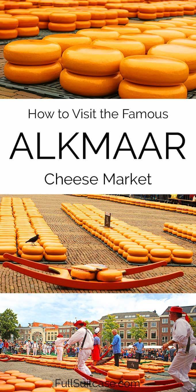 How to visit the Dutch Alkmaar cheese market in the Netherlands